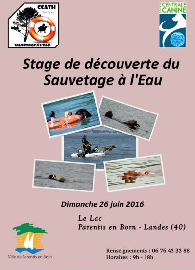ccath stage decouverte 2016
